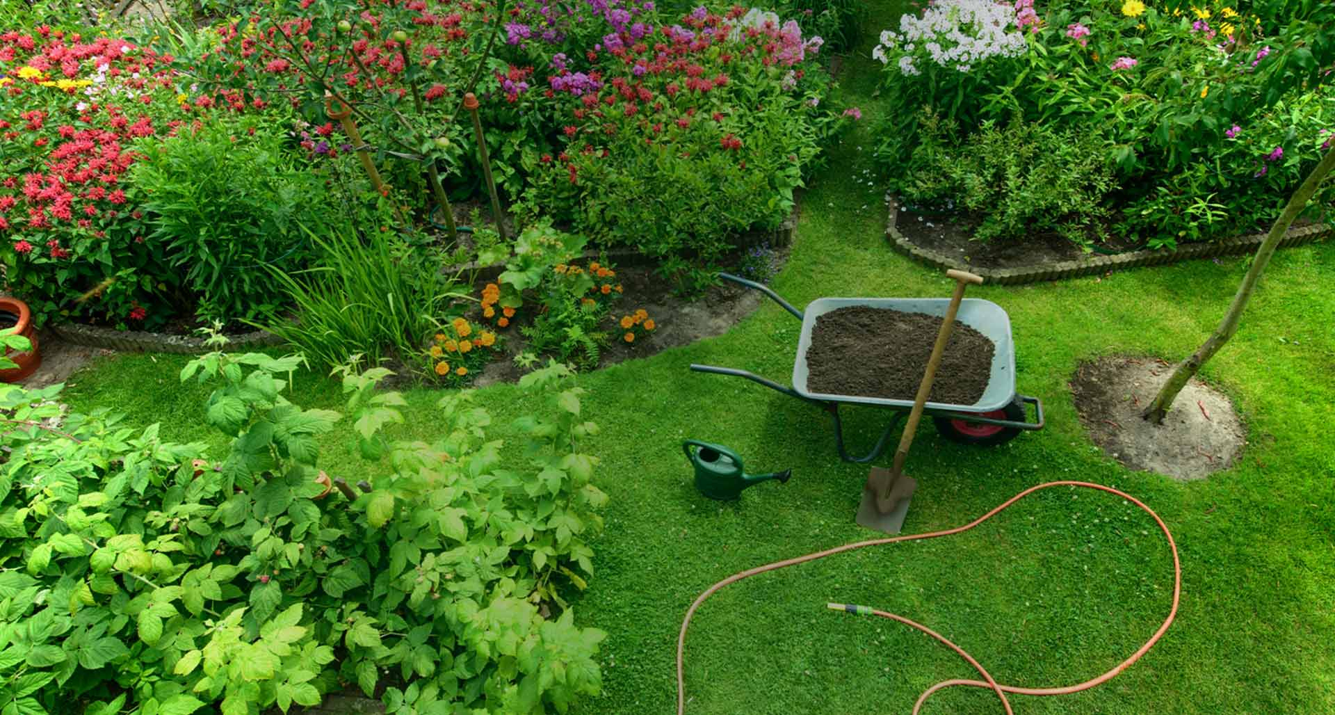 Jardineries Truffaut : Spécialiste Jardin, Animaux, Maison ... concernant Aménagement Jardin Pas Cher