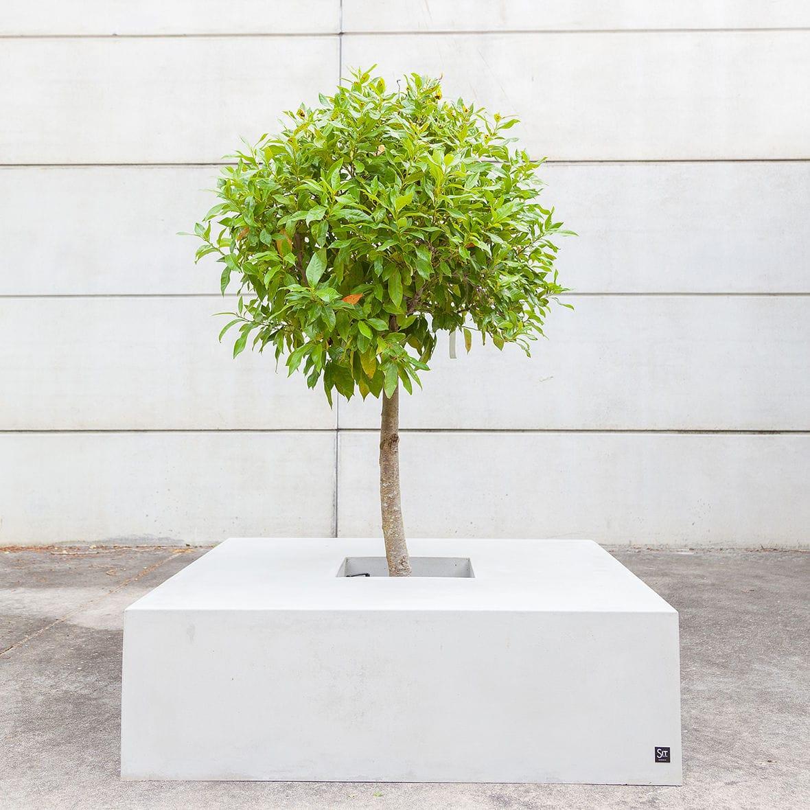 Jardinière En Béton Fibré / Carrée / Avec Banc Intégré ... à Table De Jardin En Bois Avec Banc Integre