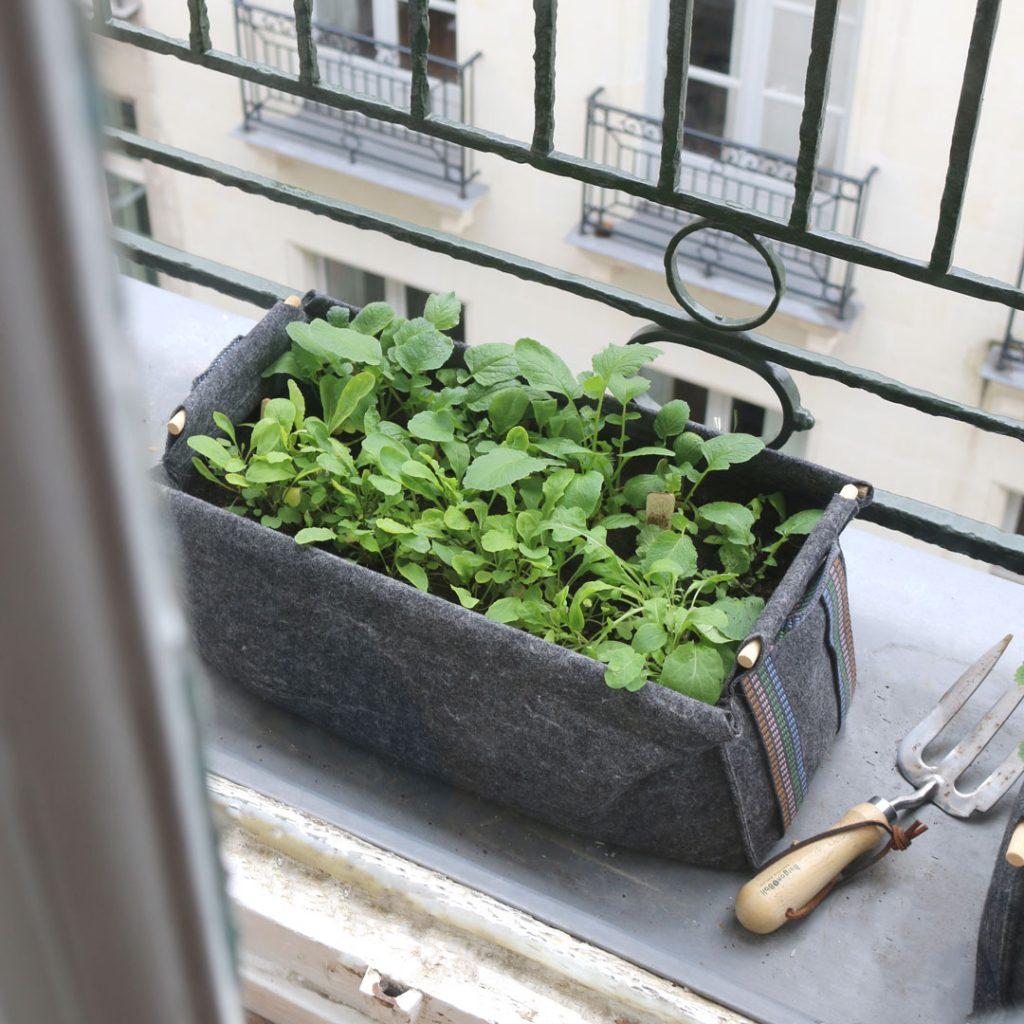 Jardinière Grise En Géotextile Pour Faire Pousser Aromates ... encequiconcerne Geotextile Jardin