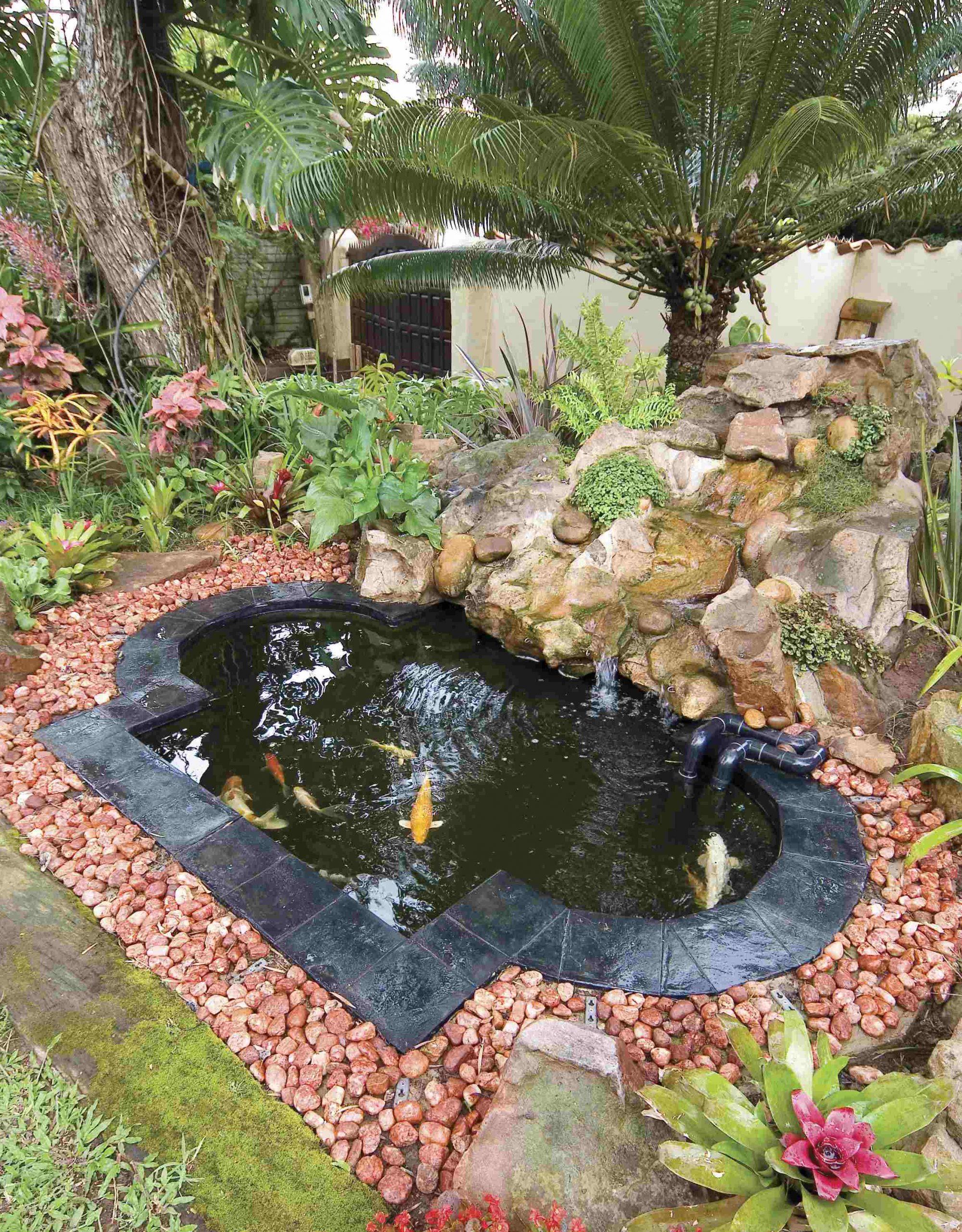 Jardins D'eau Larochelle intérieur Chute D Eau Bassin De Jardin