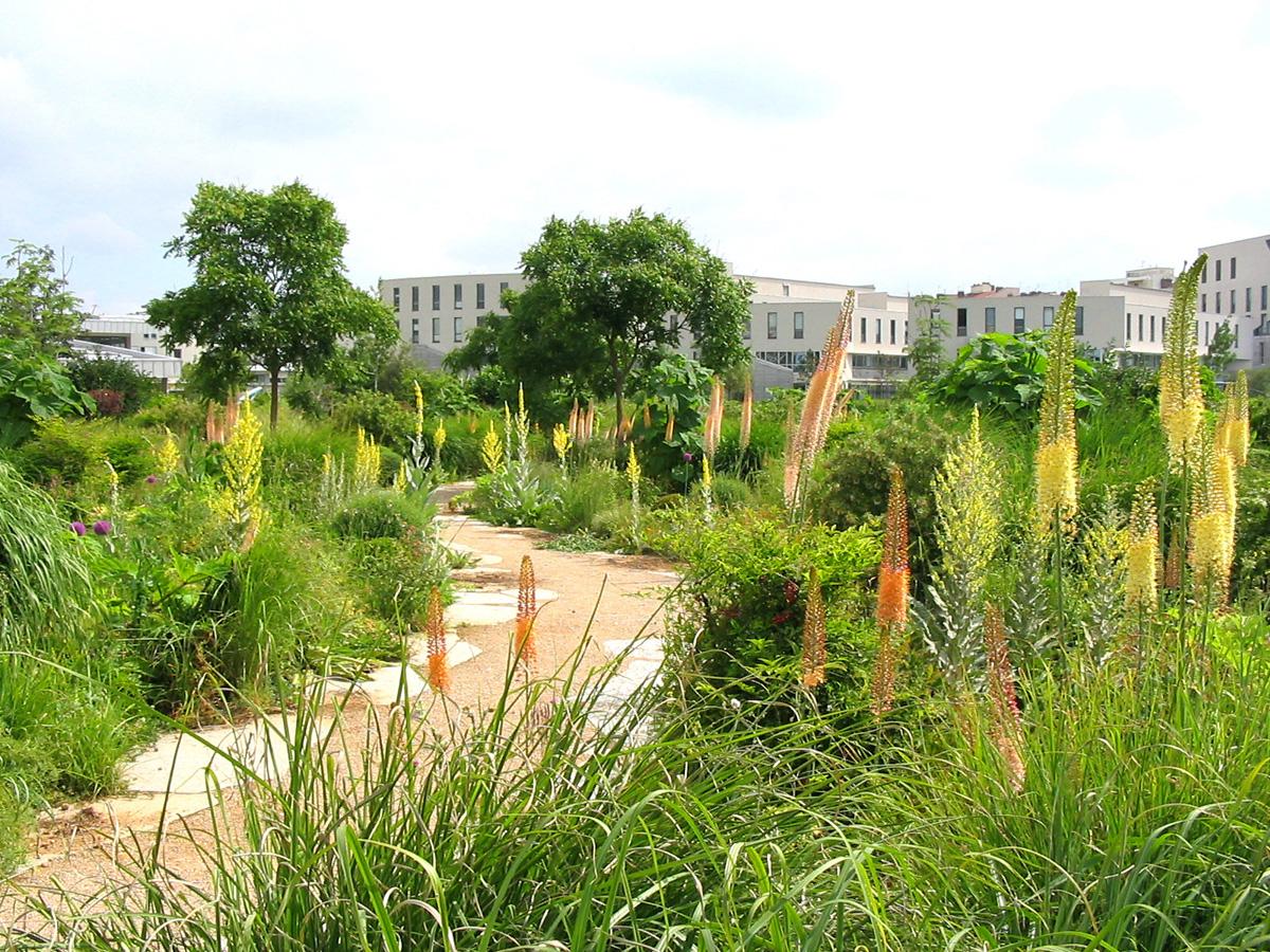 Jardins, Paysage Et Génie Naturel - Jardins, Paysage Et ... avec Idée De Génie Jardin