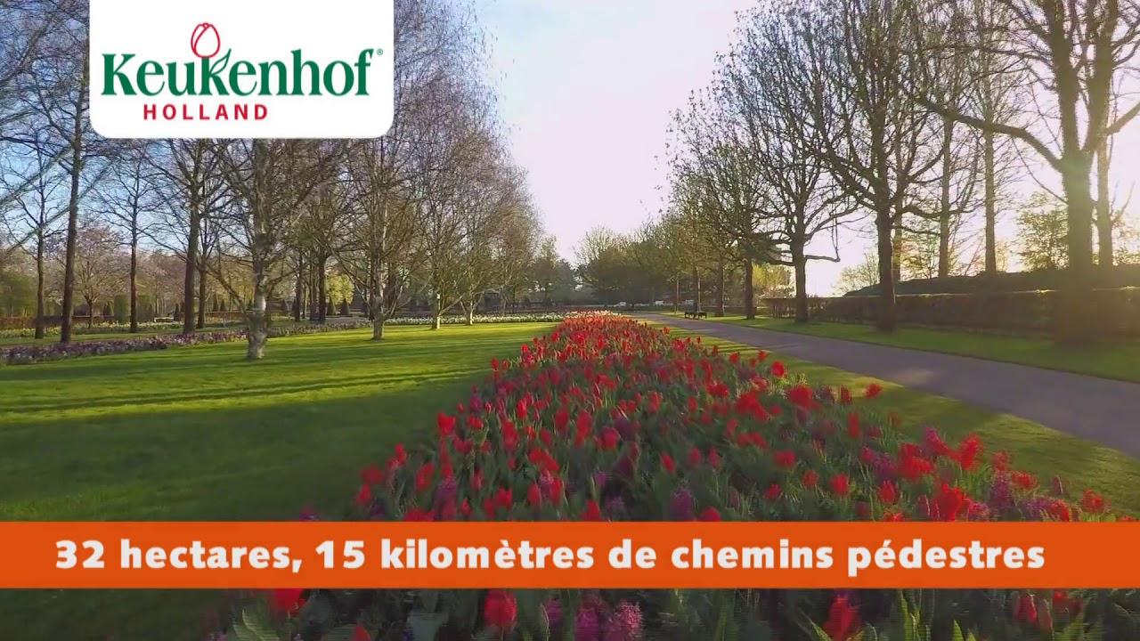 Keukenhof 2019 Français intérieur Jardin De Keukenhof