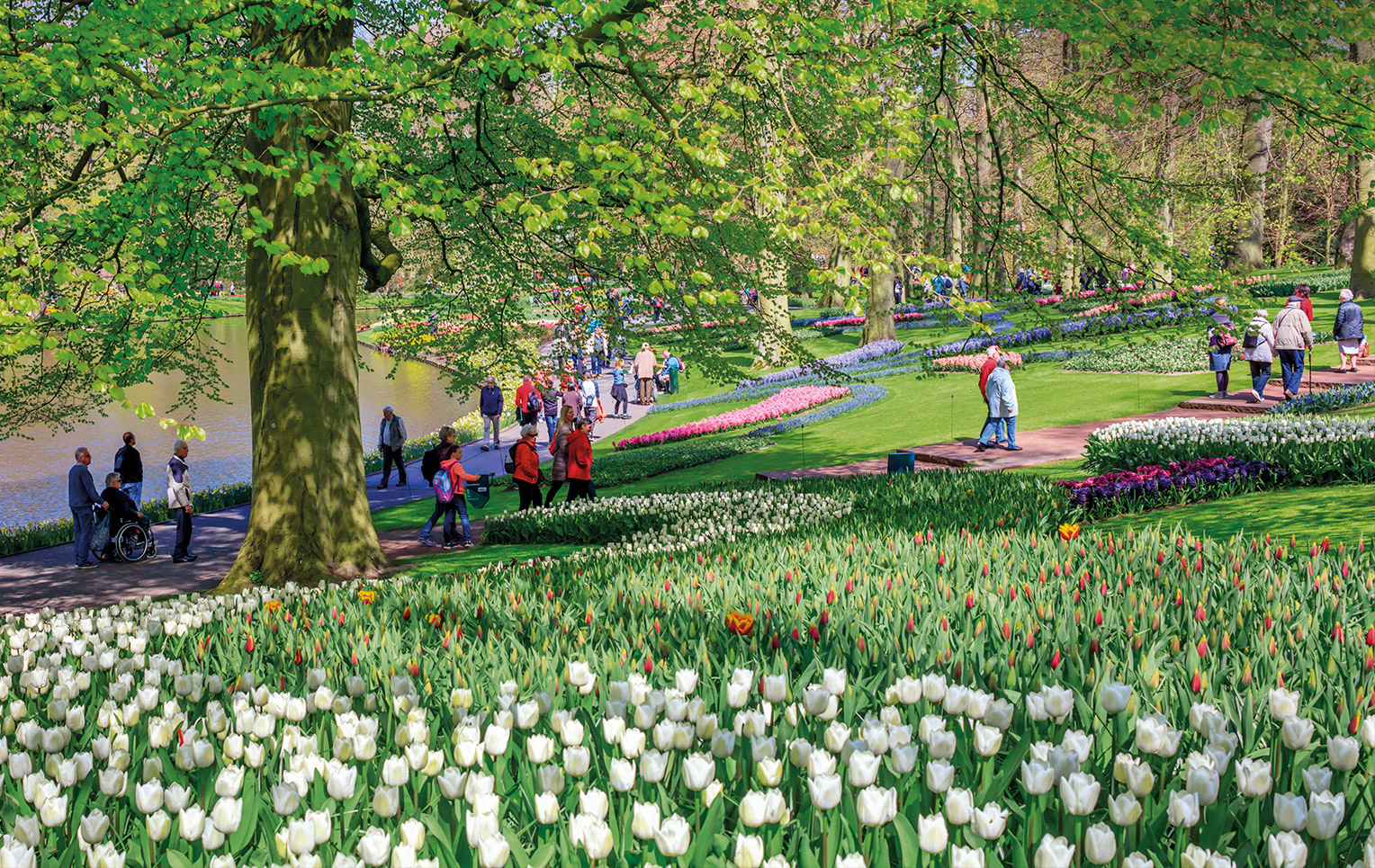 Keukenhof, El Jardín Más Bello Está En Holanda (Y Dura Sólo ... destiné Jardin De Keukenhof