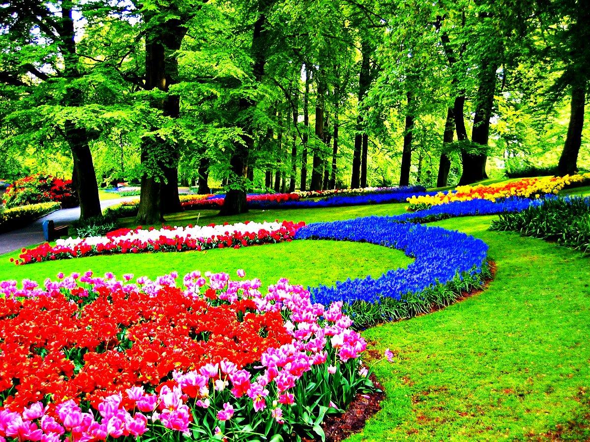 Keukenhof Parkı | Koleksiyon 'en İyi 16 Sıradışı Ve Özgün ... tout Jardin De Keukenhof