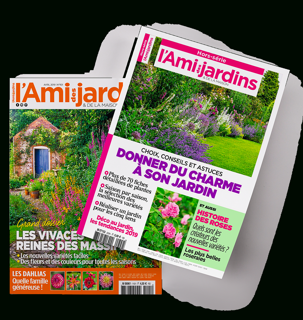 Kiosque Mag pour L Ami Des Jardins Hors Série