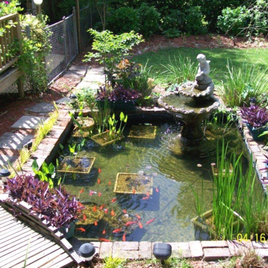 Koi Pond Designs   Jardin D'eau, Bassin De Jardin Et ... dedans Jeux D Eau Jardin