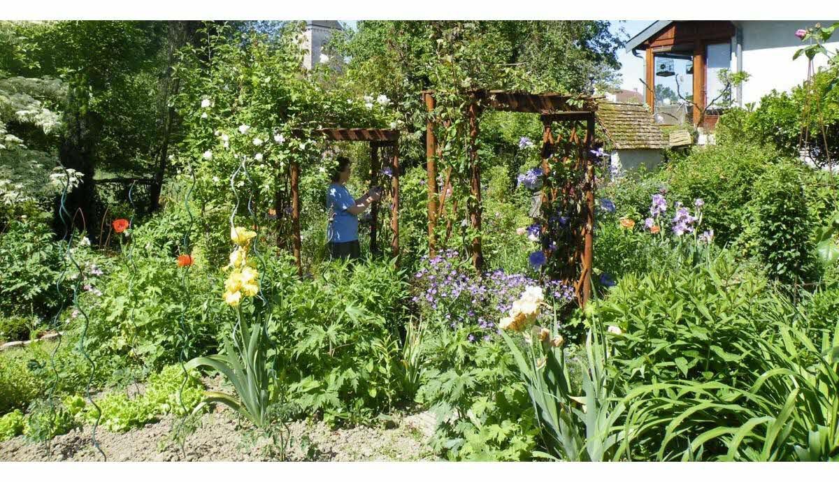 La Chaux   Du Bonheur Pastel Au Jardin Il N'y A Qu'un Pas concernant Chaux Pour Jardin