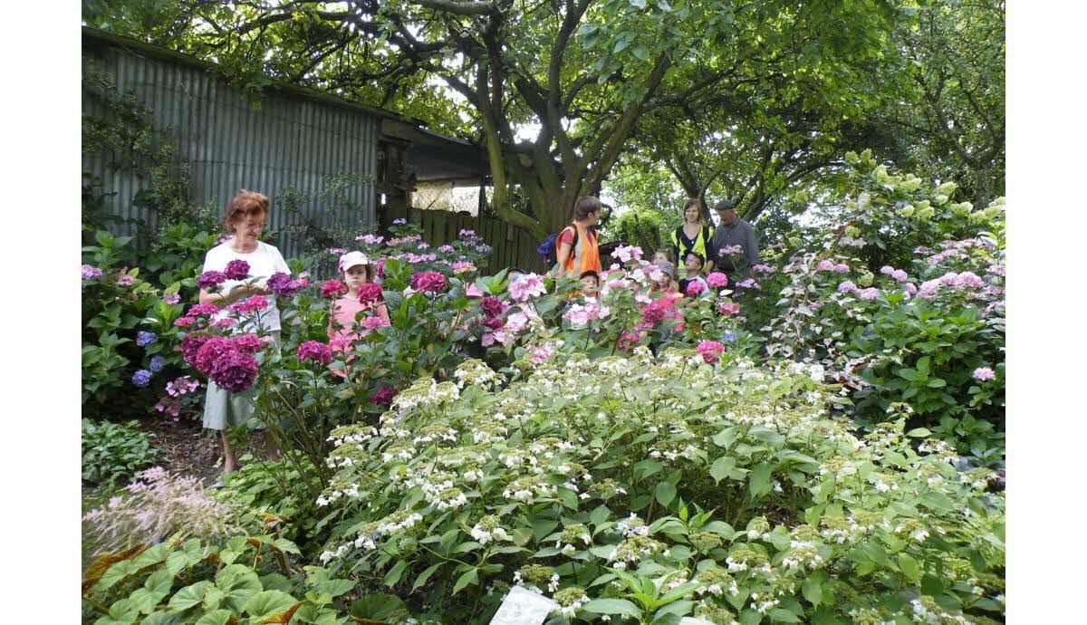 La Chaux   Le Jardin Des Sources, Un Havre De Verdure Et De Paix concernant Chaux Pour Jardin