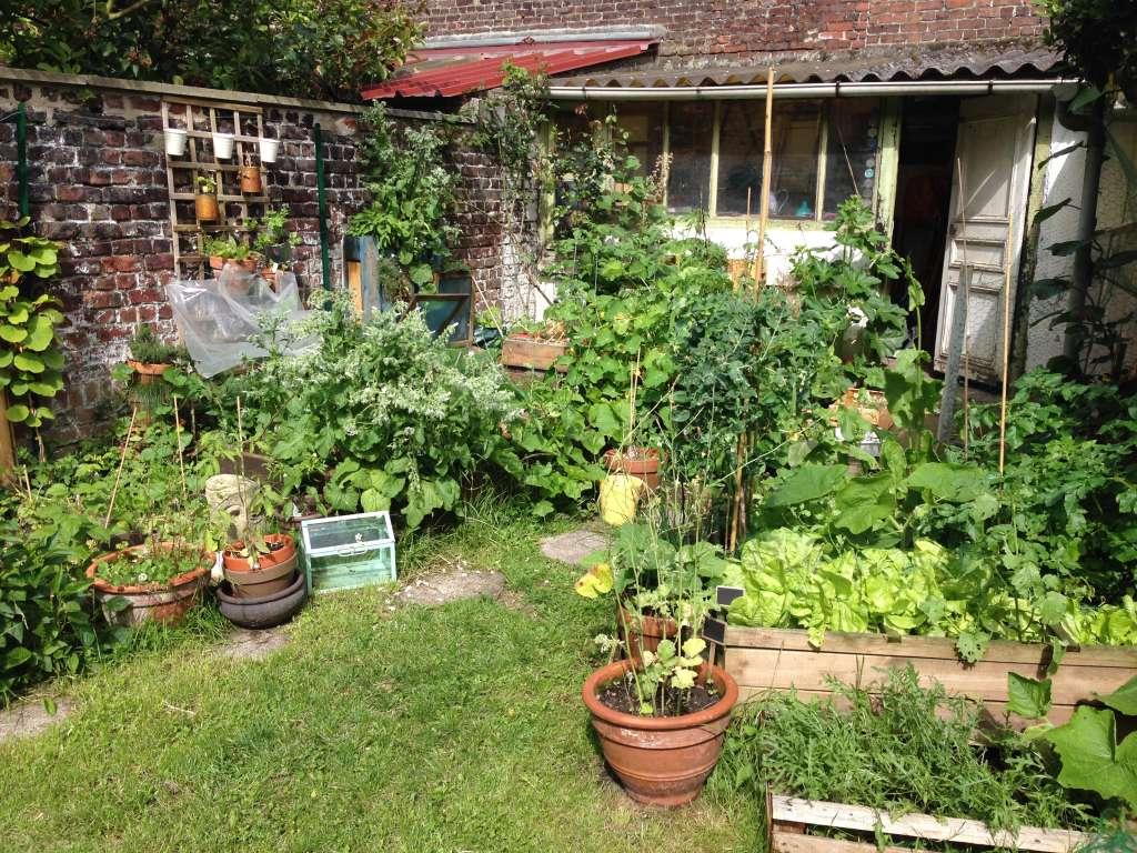 La Chronique D'audrey : Dessiner Le Plan De Mon Futur Jardin ... dedans Faire Un Petit Potager Dans Son Jardin