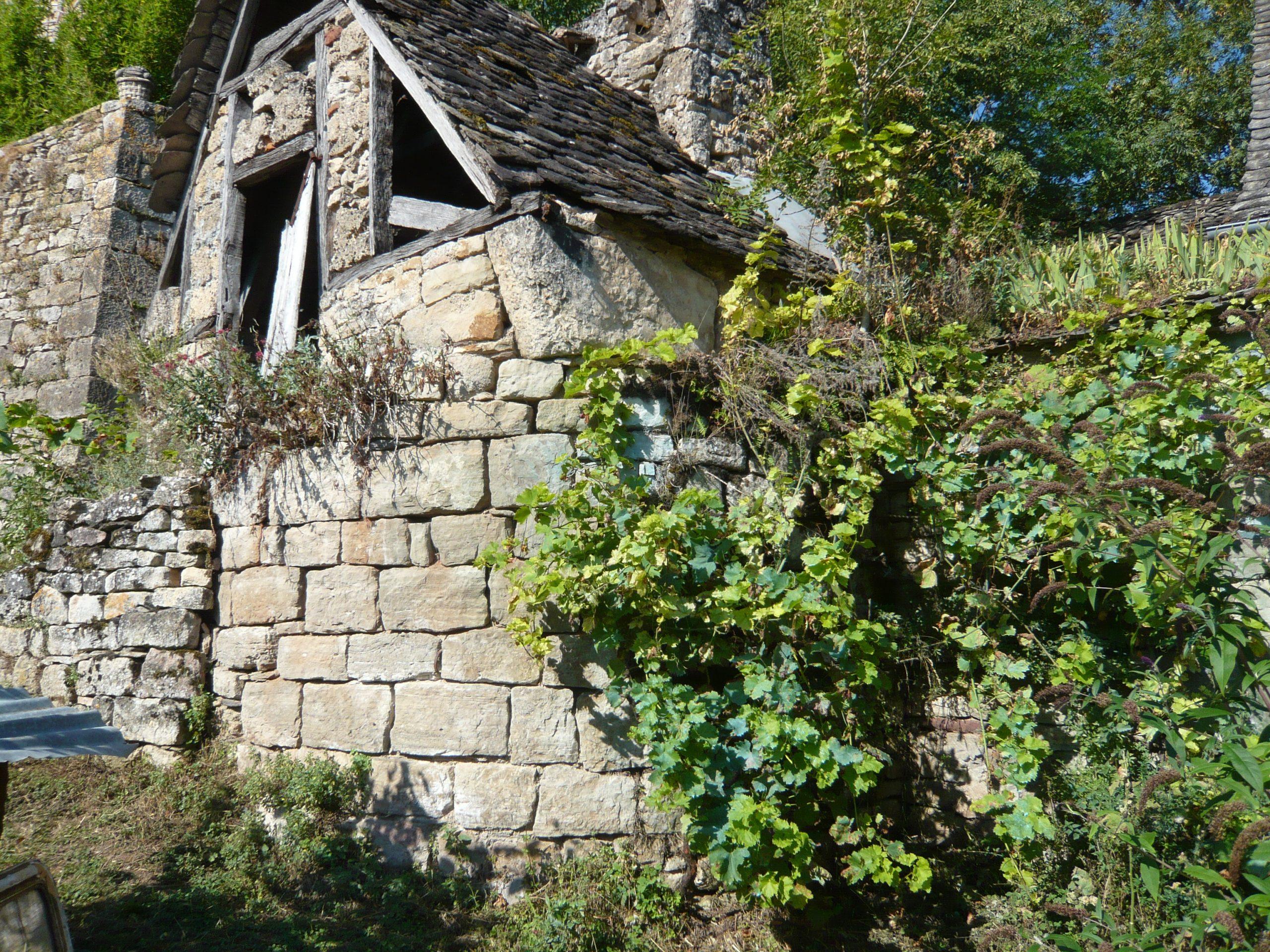 La Maison Albouy: Deux Arceaux Et Une Base De Tour dedans Arceau Jardin