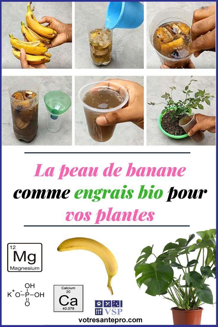 La Peau De Banane Comme Engrais Bio Pour Vos Plantes ... dedans Engrais Bio Jardin