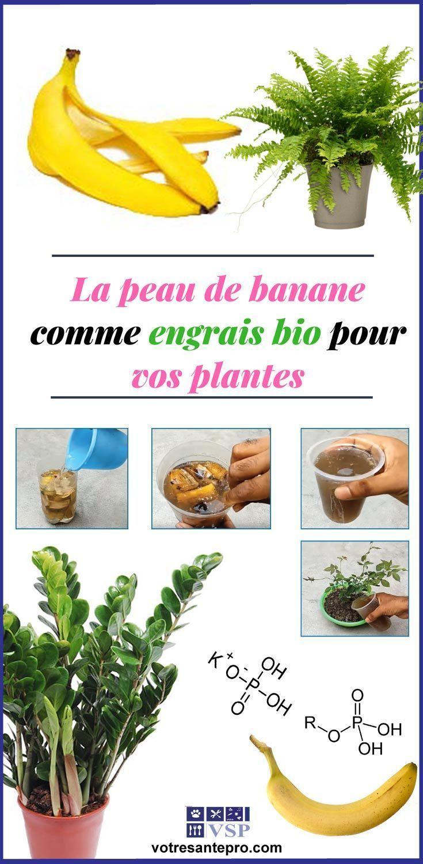 La Peau De Banane Comme Engrais Bio Pour Vos Plantes ... tout Engrais Bio Jardin