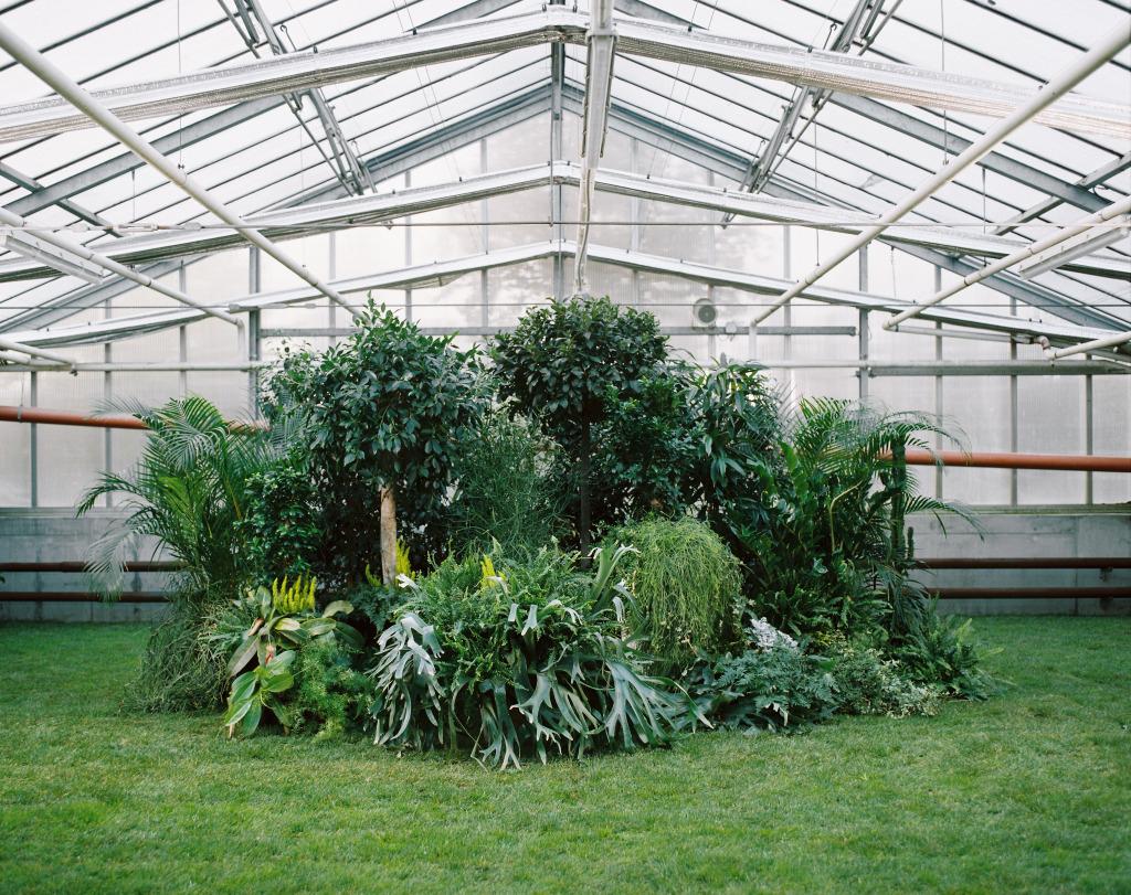 La Serre - Jardinerie, 11 Rue De Sélestat 67300 Schiltigheim ... avec Serre De Jardin Leroy Merlin
