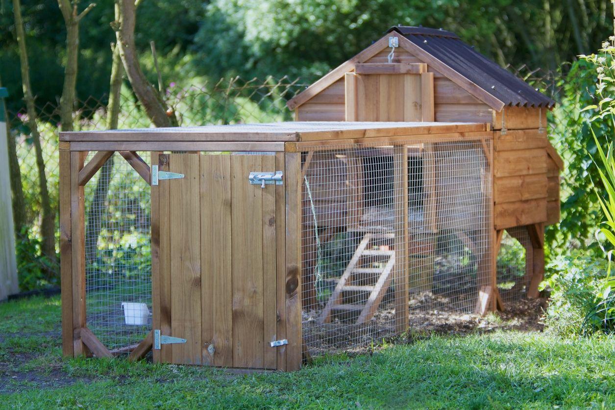 La Tendance : Aménager Un Poulailler Dans Son Jardin ... destiné Abri De Jardin Bois Bricomarché