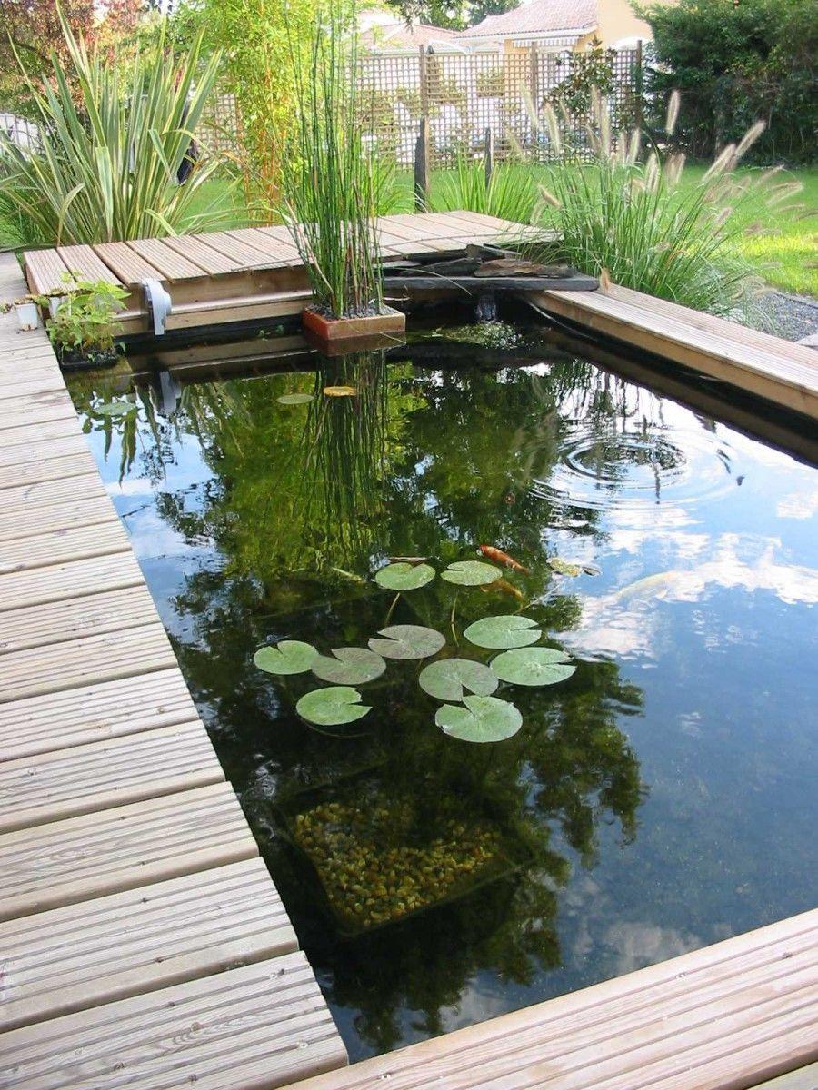 Laguna Bassin Rectangulaire - Recherche Google | Jardin Avec ... tout Petit Jardin Avec Bassin