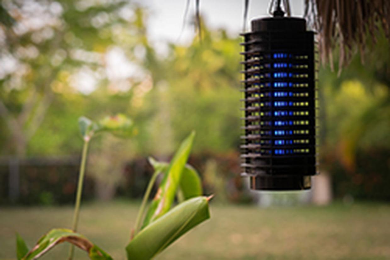 Lampe Anti-Moustiques : Est-Ce Efficace ? intérieur Anti Moustique Jardin