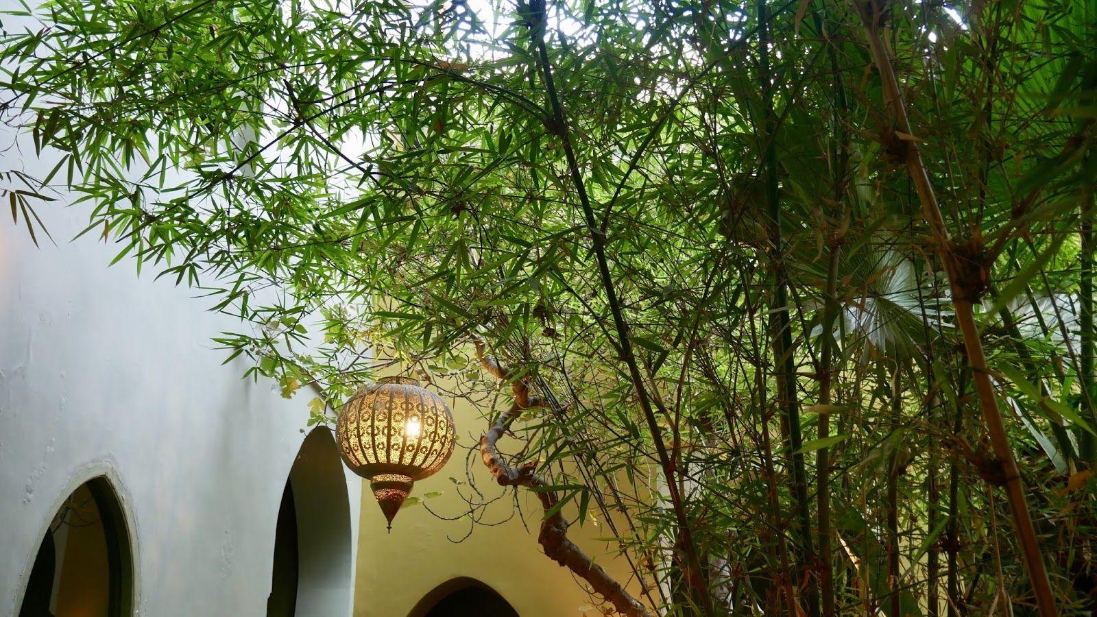 Lampion Restaurant Le Jardin Marrakech Médina | Lugares En ... concernant Lampion Jardin