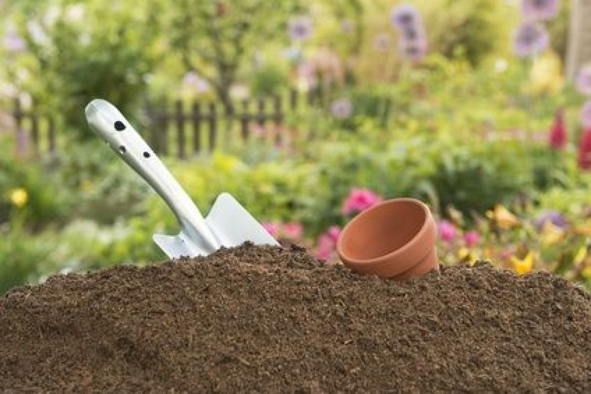 L'apport En Azote Dans Un Sol De Jardin concernant Quelle Chaux Pour Le Jardin
