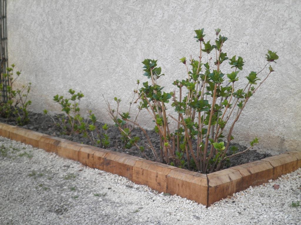 Le Bois | Arborescence Paysage serapportantà Traverse Bois Pour Jardin