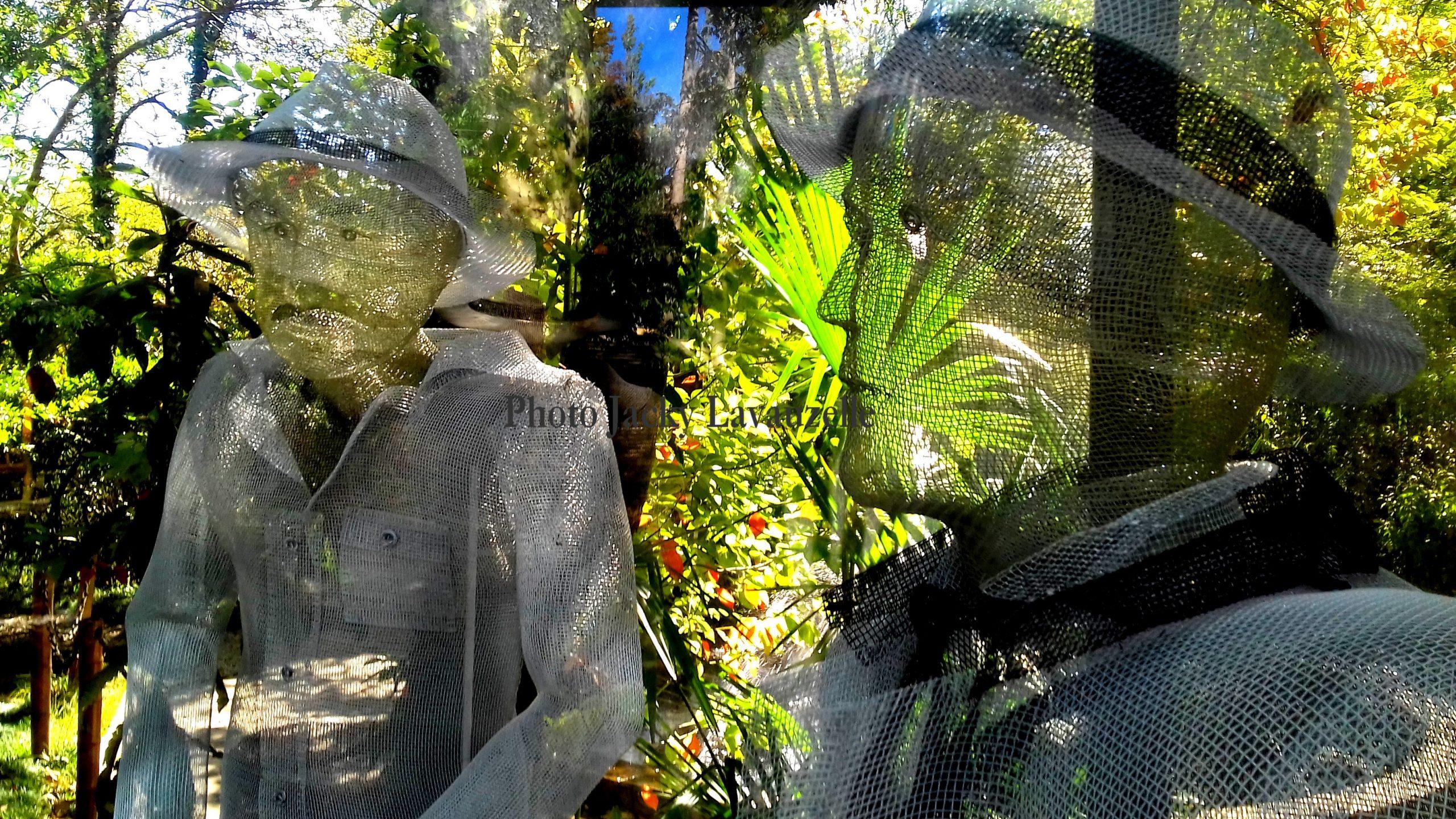 Le Jardin Botanique De Koutaïssi - ქუთაისის ... pour Jardin Botanique Emploi