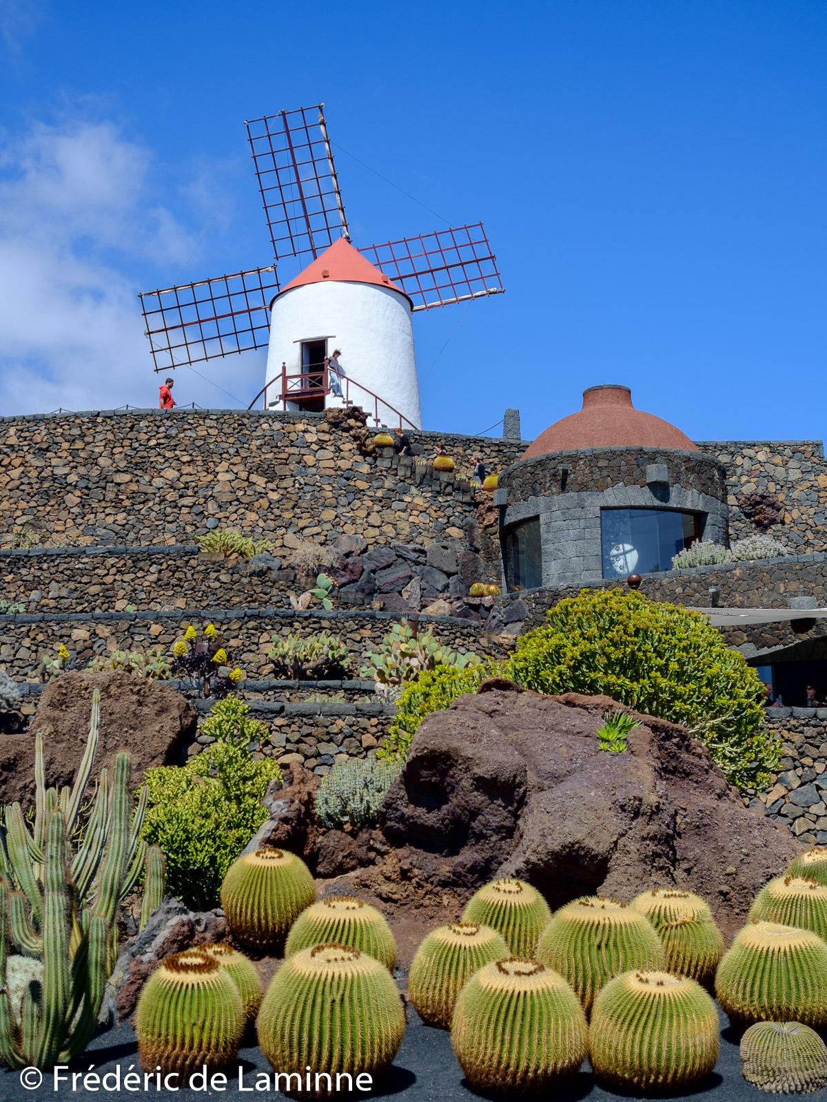 Le Jardin De Cactus - Salut Lanzarote pour Moulin A Vent Pour Jardin
