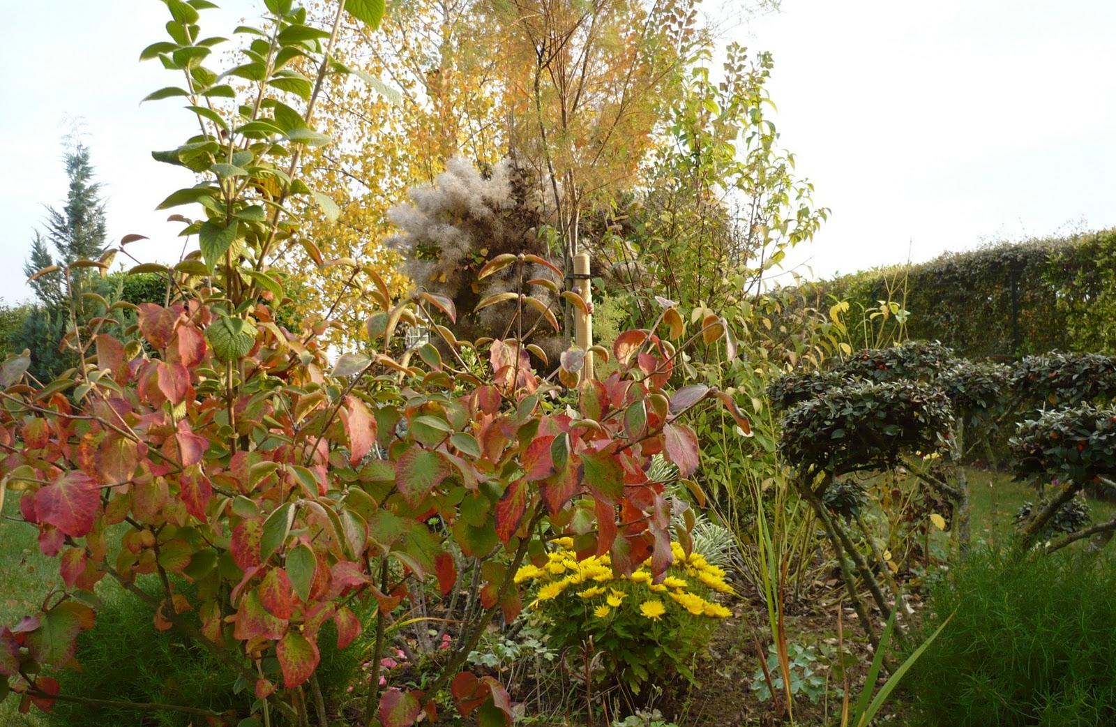 Le Jardin De Pacalou: Teintes Du Moment. avec Ecorces Jardin