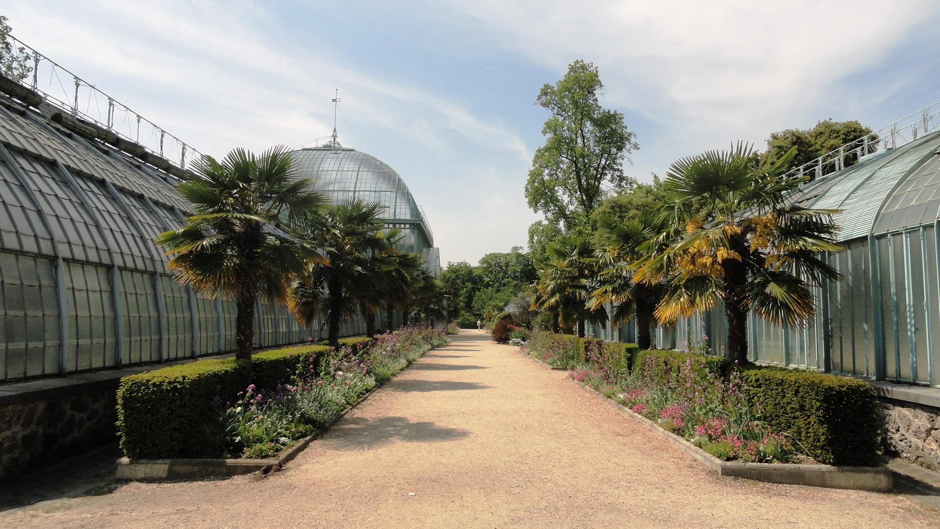 Le Jardin Des Serres D'auteuil // Un Coin De Paradis ... dedans Exposition Serre De Jardin