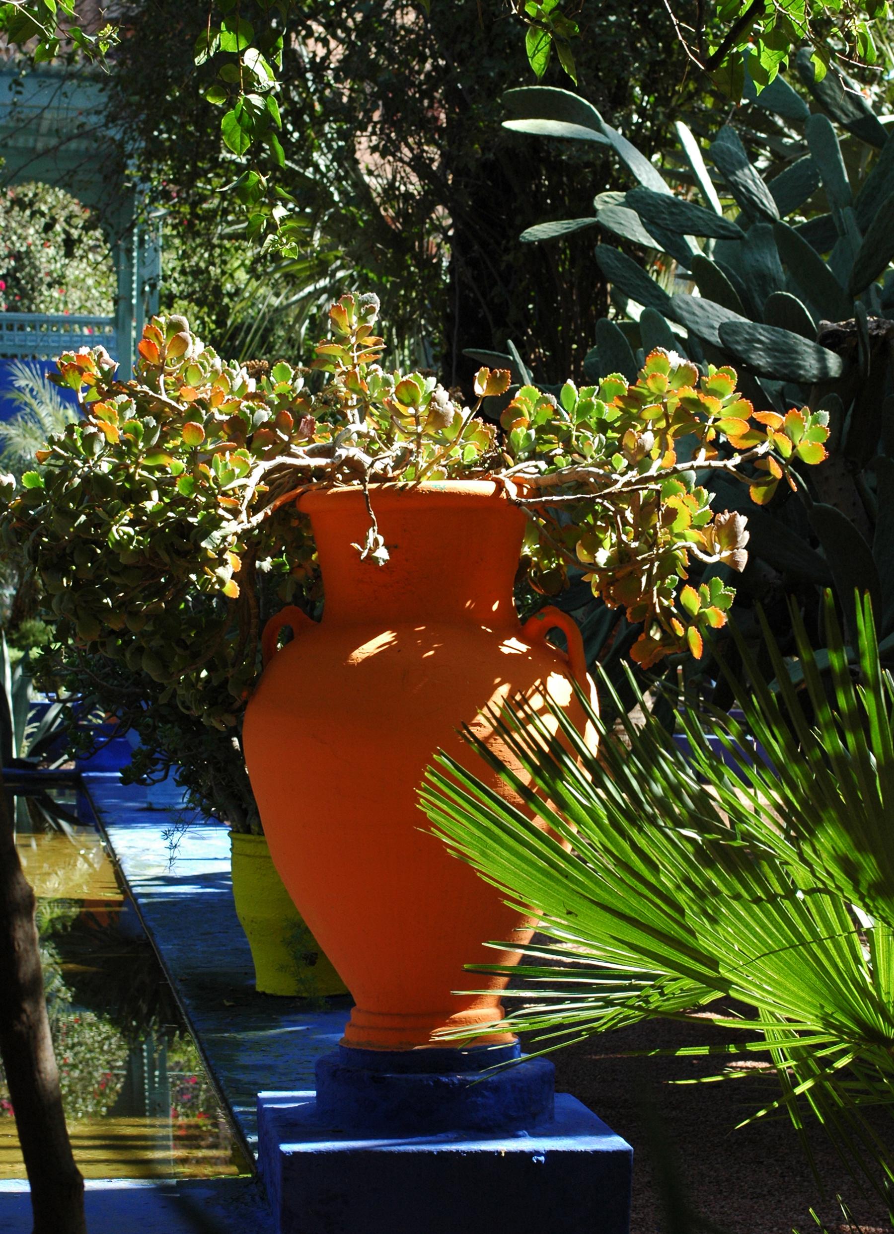 Le Jardin Majorelle À Marrakech Au Maroc à Jarre De Jardin