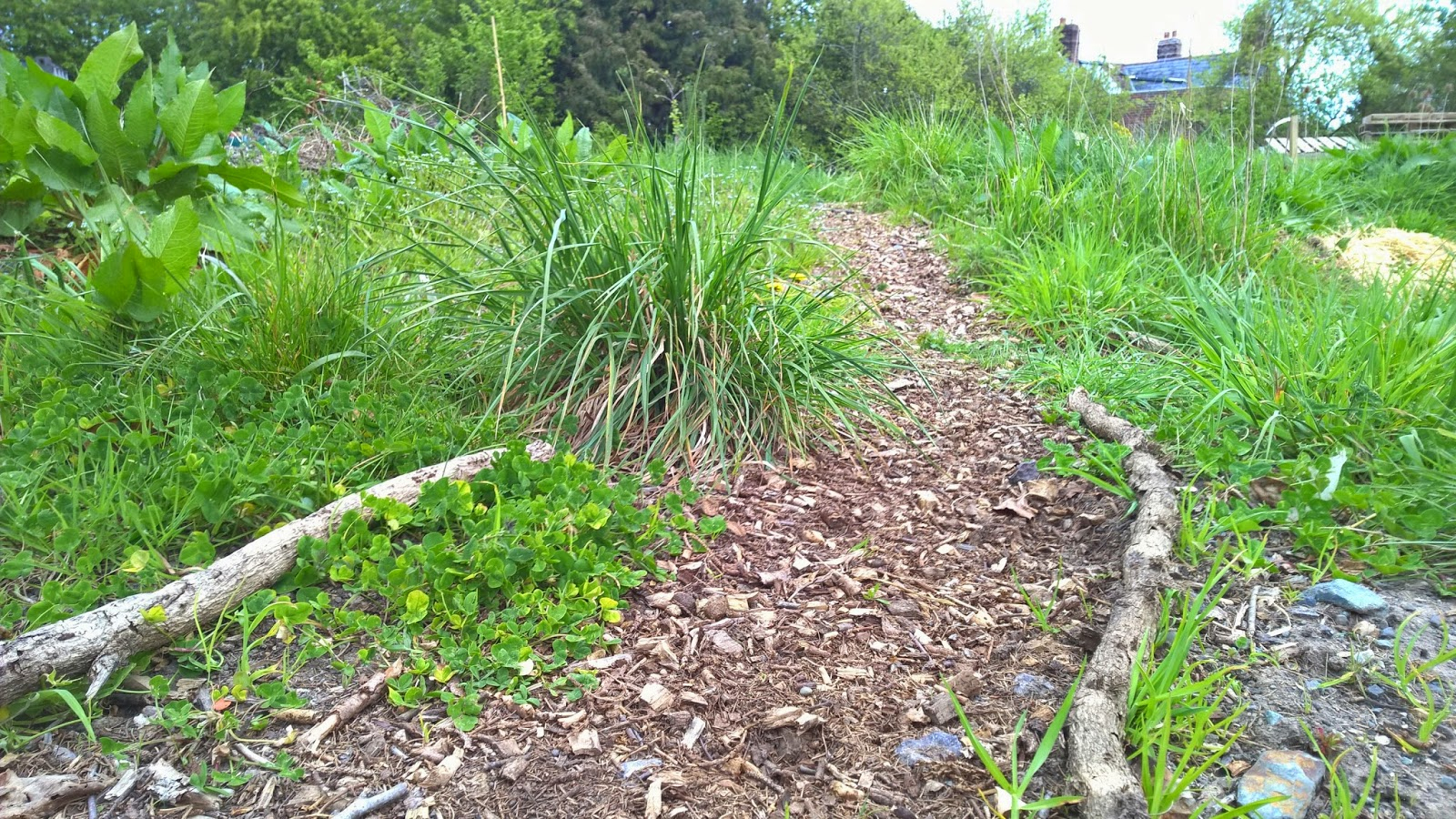 Le Jardin Potager Se Prépare Dès Février ! dedans Semoir Jardin Potager