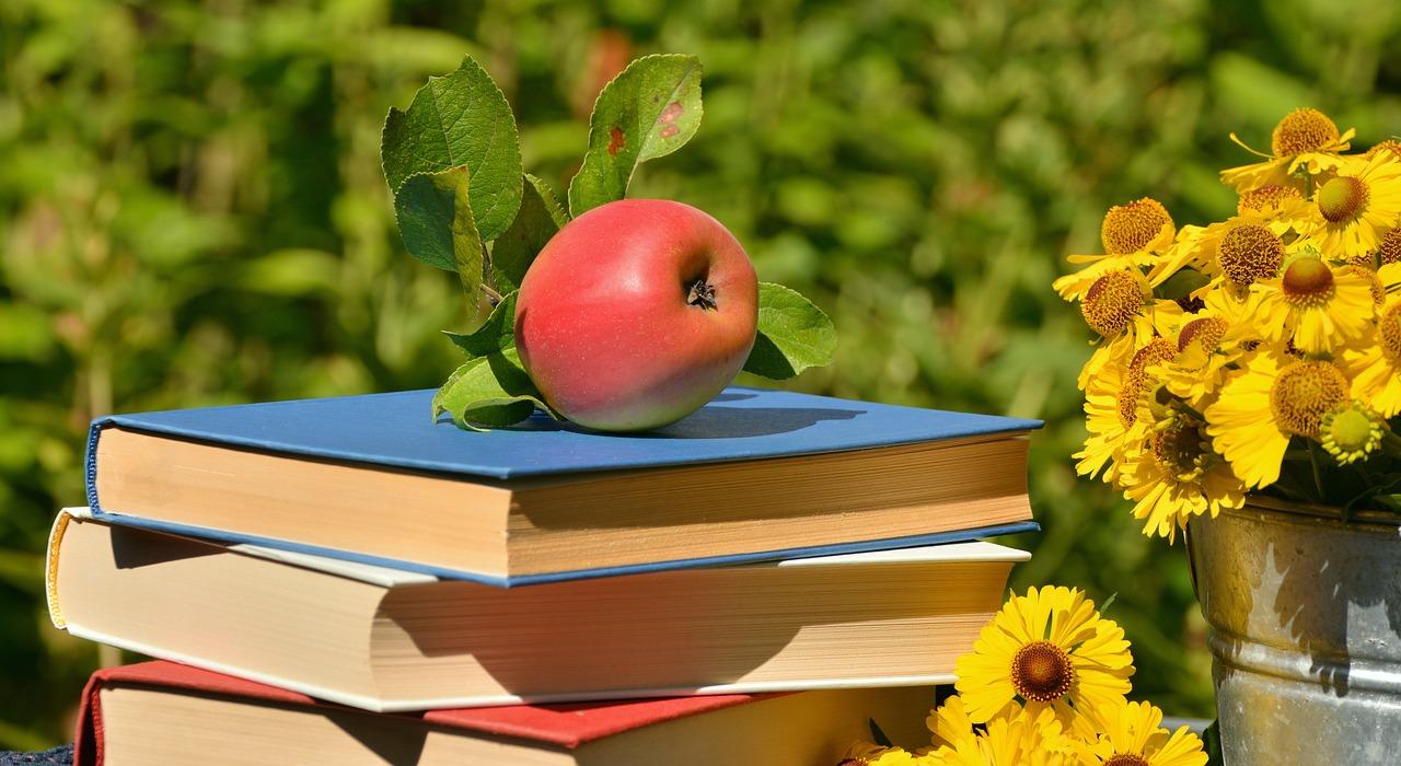 Le Jardinage Pour Les Nuls, Un Livre Simple Que Je Conseille concernant Jardiner Pour Les Nuls