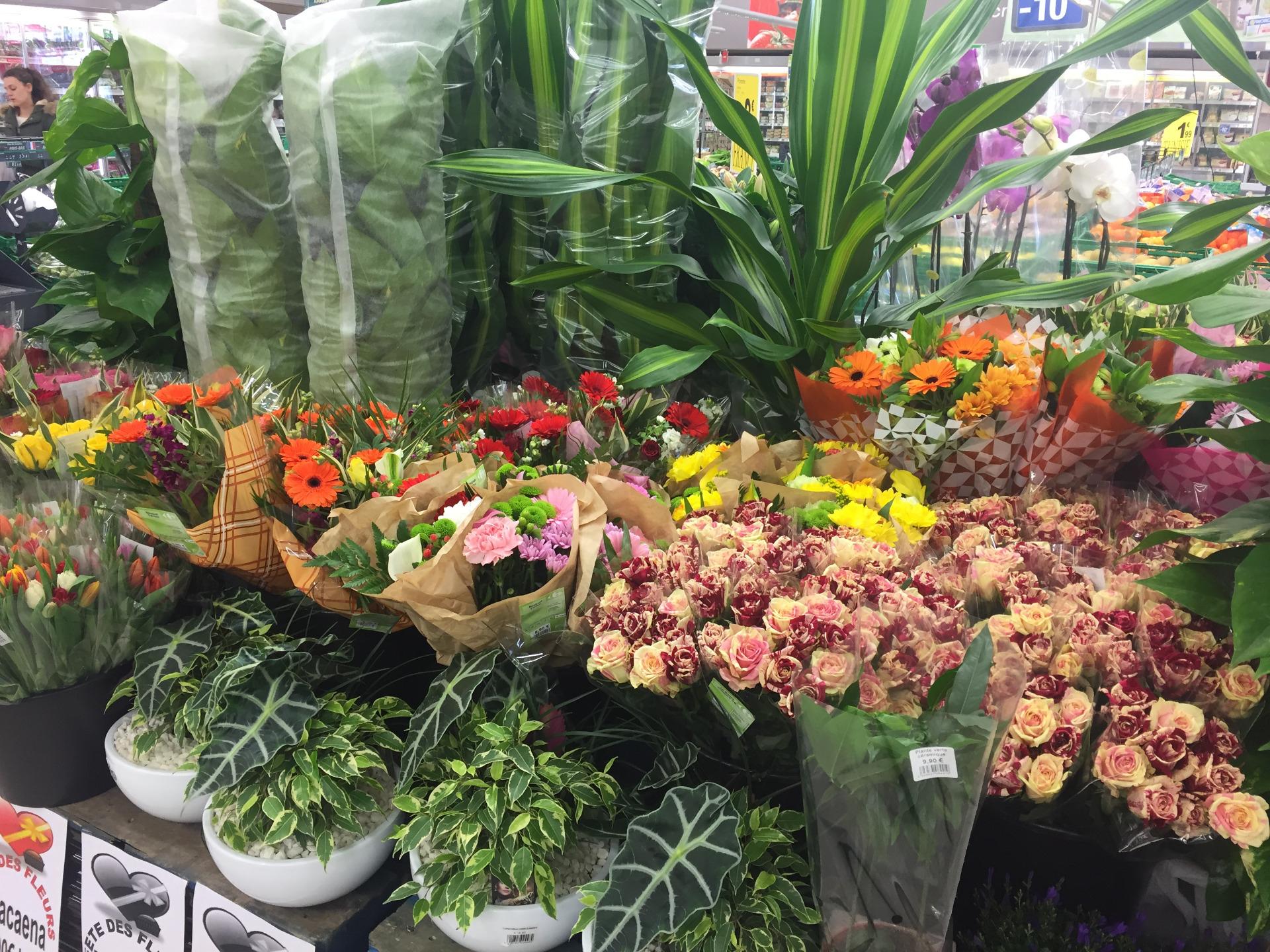 Le Magazine D's De Provencia - Carrefour Market La Rochette avec Abri De Jardin En Bois Carrefour