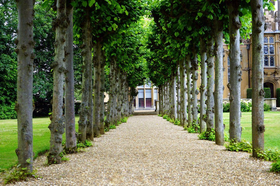 Le Meilleur Désherbant Pour Le Jardin, Comparatif Et Avis ... concernant Bruleur De Déchets Jardin