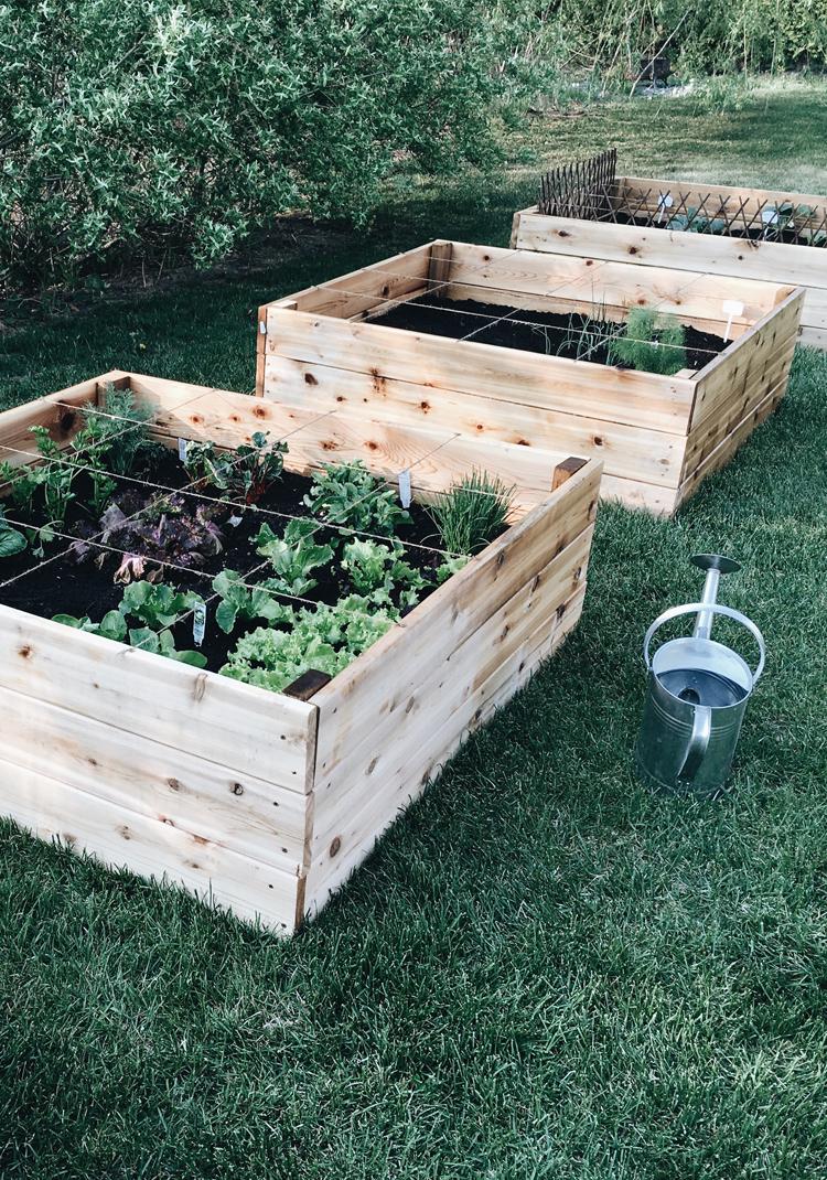 Le Potager En Carrés (Square Foot Garden) - Trois Fois Par Jour à Fabriquer Un Jardin En Hauteur