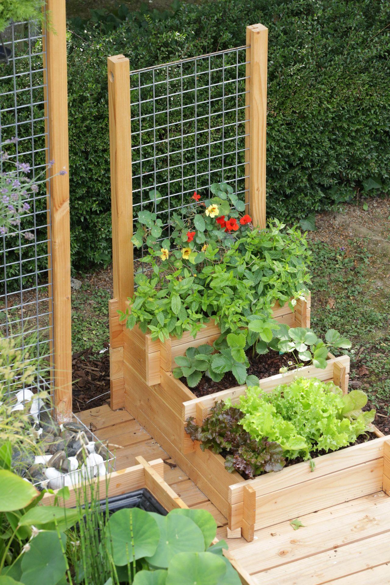 Le Potager Gourmand - Botanic® | Jardinage | Potager Bois ... dedans Jardin Surélevé Bois