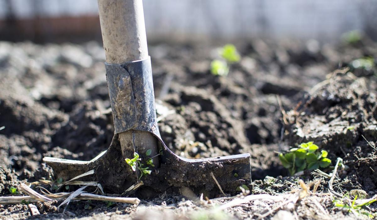 Le Semoir À Pousser Pour Semer Vos Graines Facilement - Les ... dedans Semoir Jardin Potager