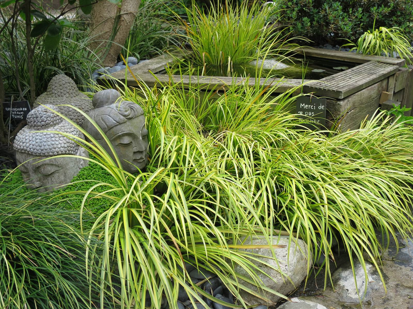 Le Sentier Du Chimonobambusa, Jardin Zen - La Terre Est Un ... serapportantà Jardin Zen Belgique