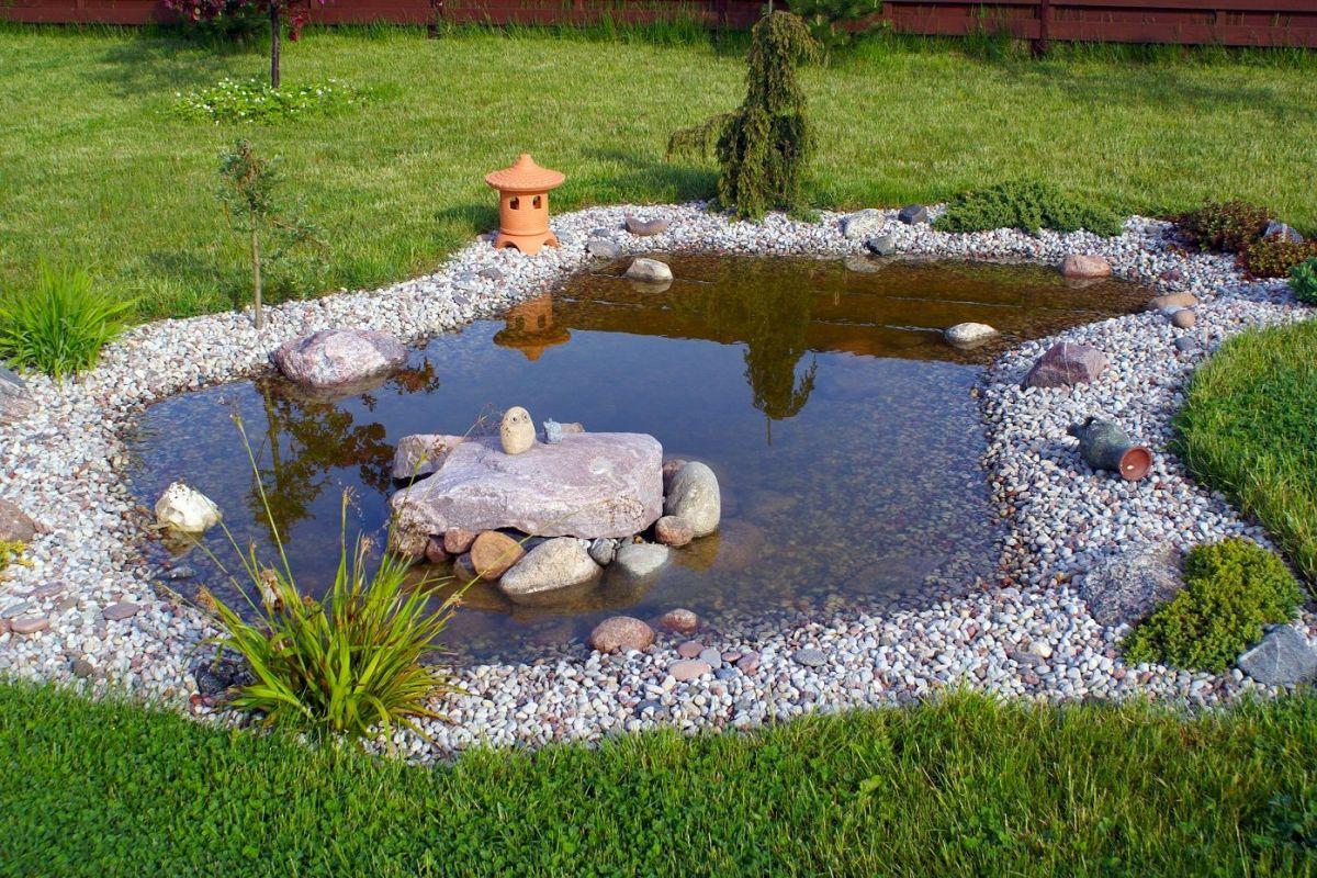 L'entretien D'un Bassin De Jardin concernant Amenagement De Bassins De Jardin