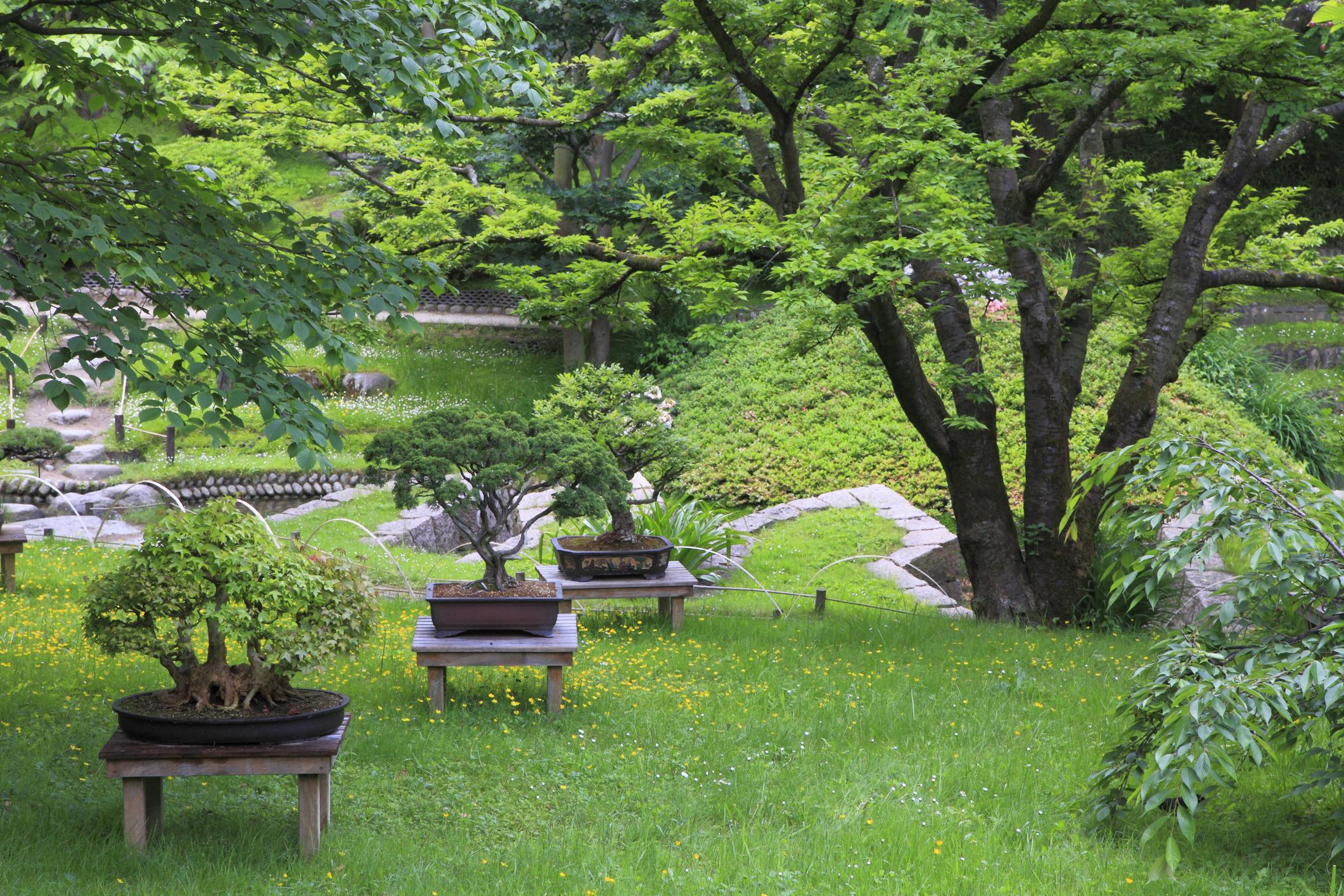 Les 5 Secrets Du Jardin Zen Et Feng-Shui ! - Maison & Travaux serapportantà Comment Aménager Son Jardin Devant La Maison