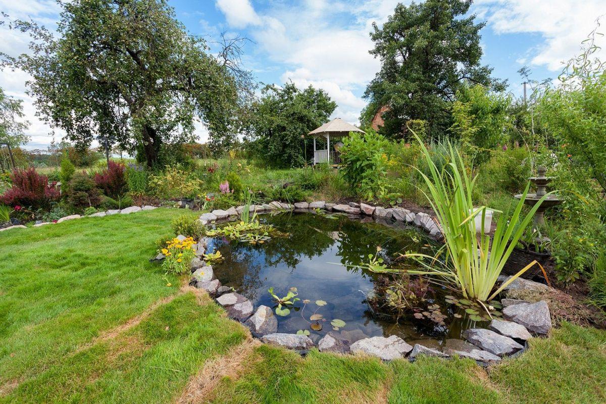 Les Accessoires Pour Bassin De Jardin tout Accessoires Pour Bassin De Jardin