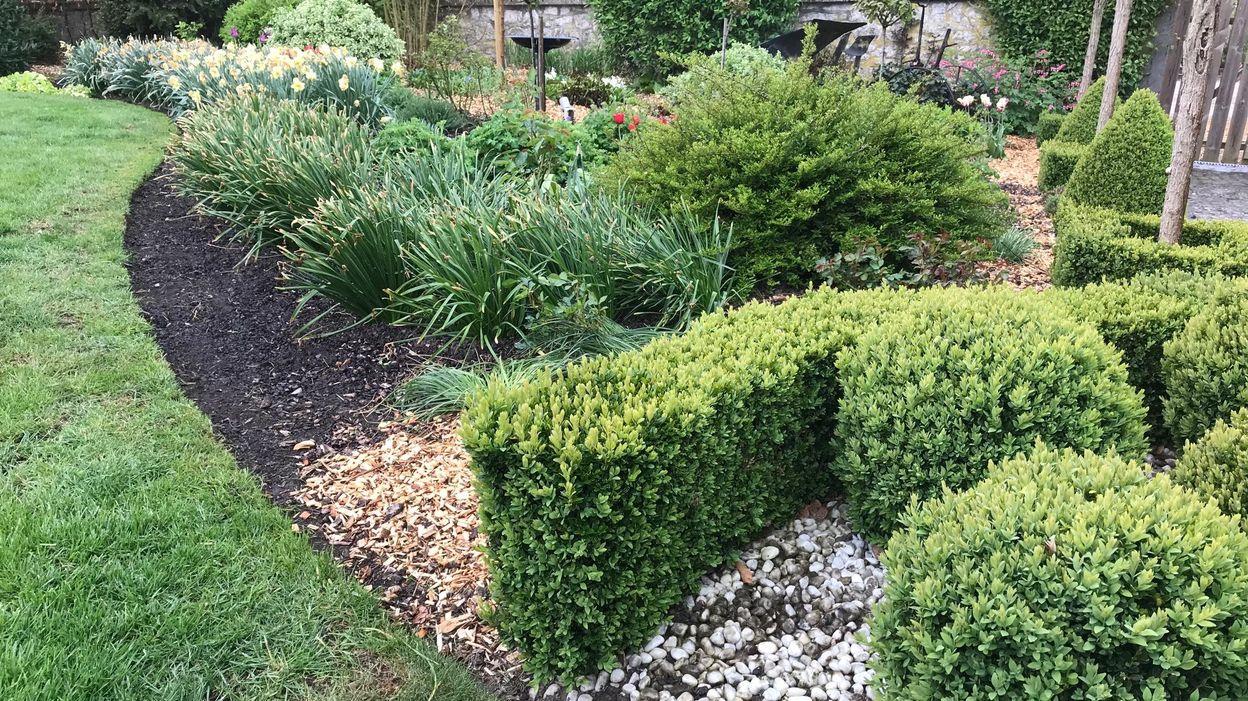 Les Bons Plans Jardin: Le Paillage Et Les Bordures avec Bordure Jardin Pas Cher