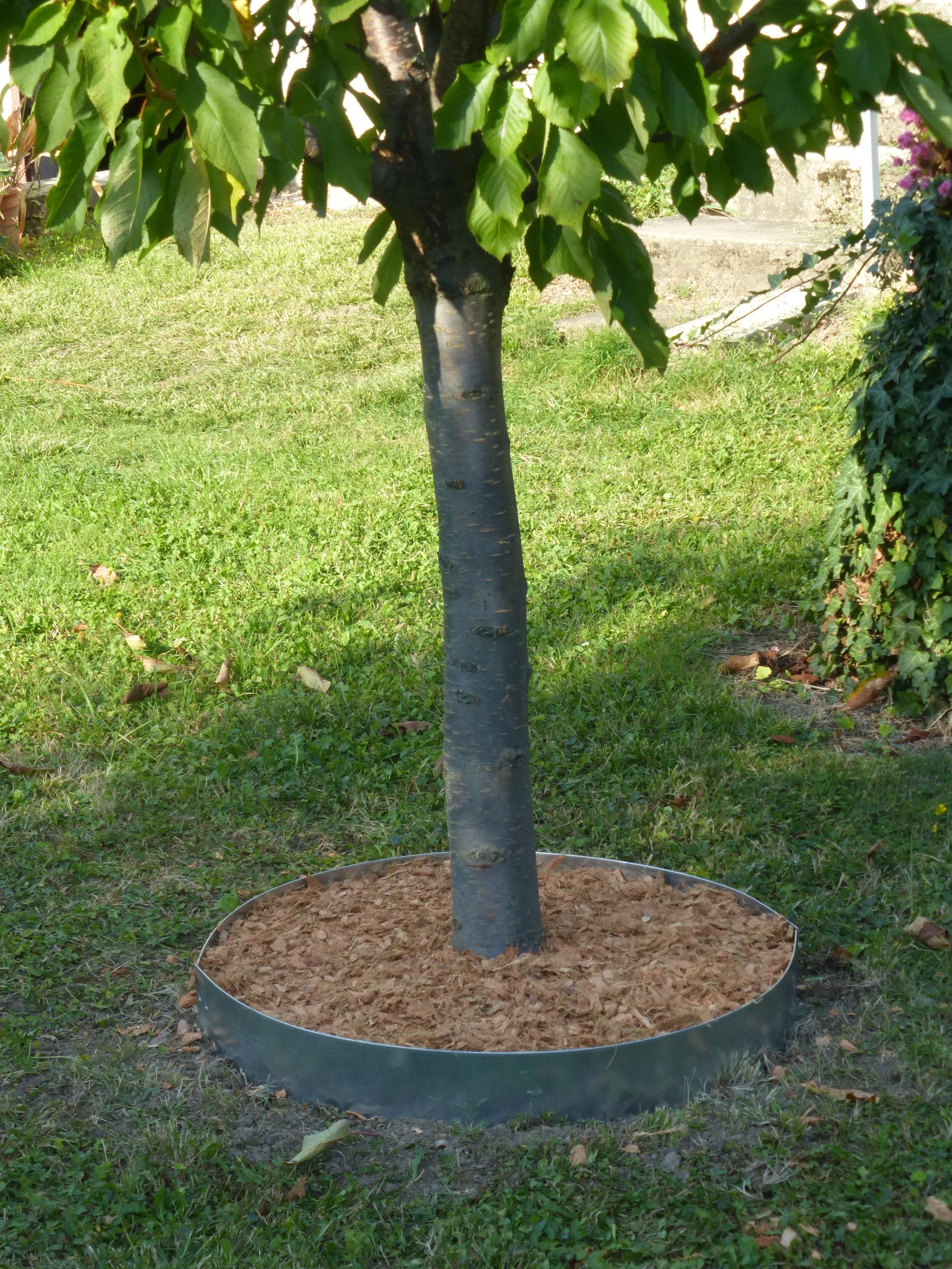 Les Conseils Pratiques De Jardin Et Saisons Pour Installer ... destiné Bordure De Jardin En Acier Galvanisé