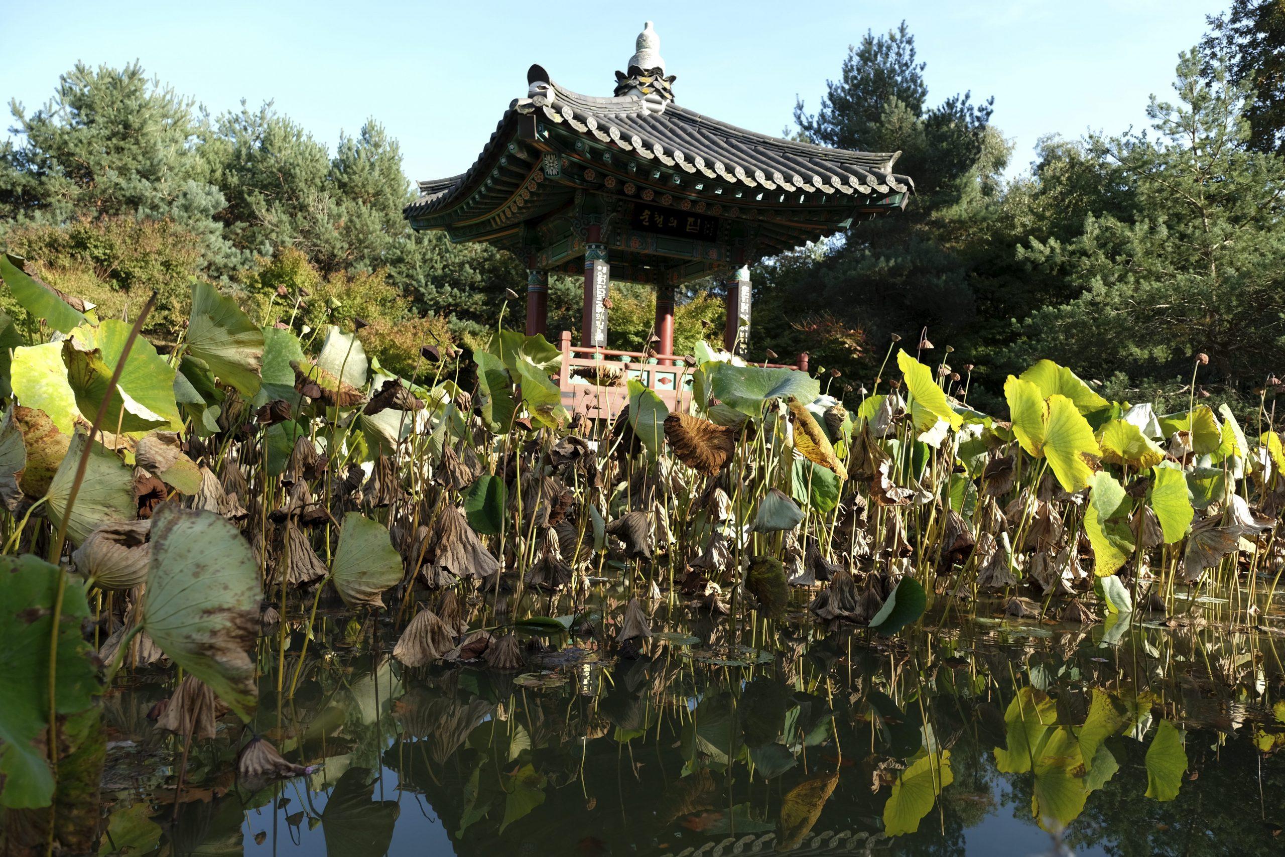 Les Parcs Et Les Jardins À Nantes pour Jardin Botanique Emploi