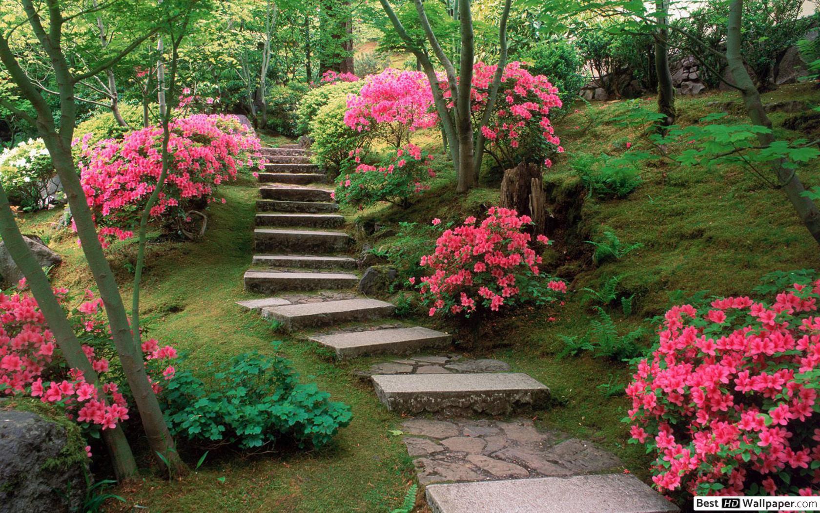 L'homme Fait Un Jardin Fleuri Hd Fond D'écran Télécharger avec Modèle De Jardin Fleuri