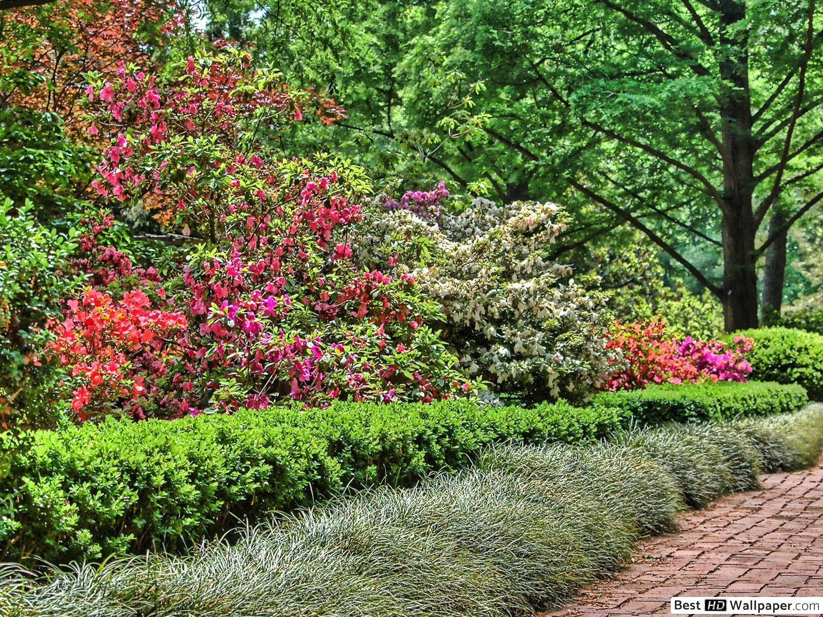 L'homme Fait Un Jardin Fleuri Hd Fond D'écran Télécharger concernant Modèle De Jardin Fleuri