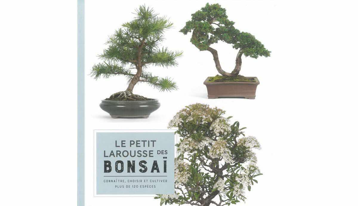 Livres - Bd | Des Arbres Pour Les Nains De Jardin concernant Arbre Pour Petit Jardin