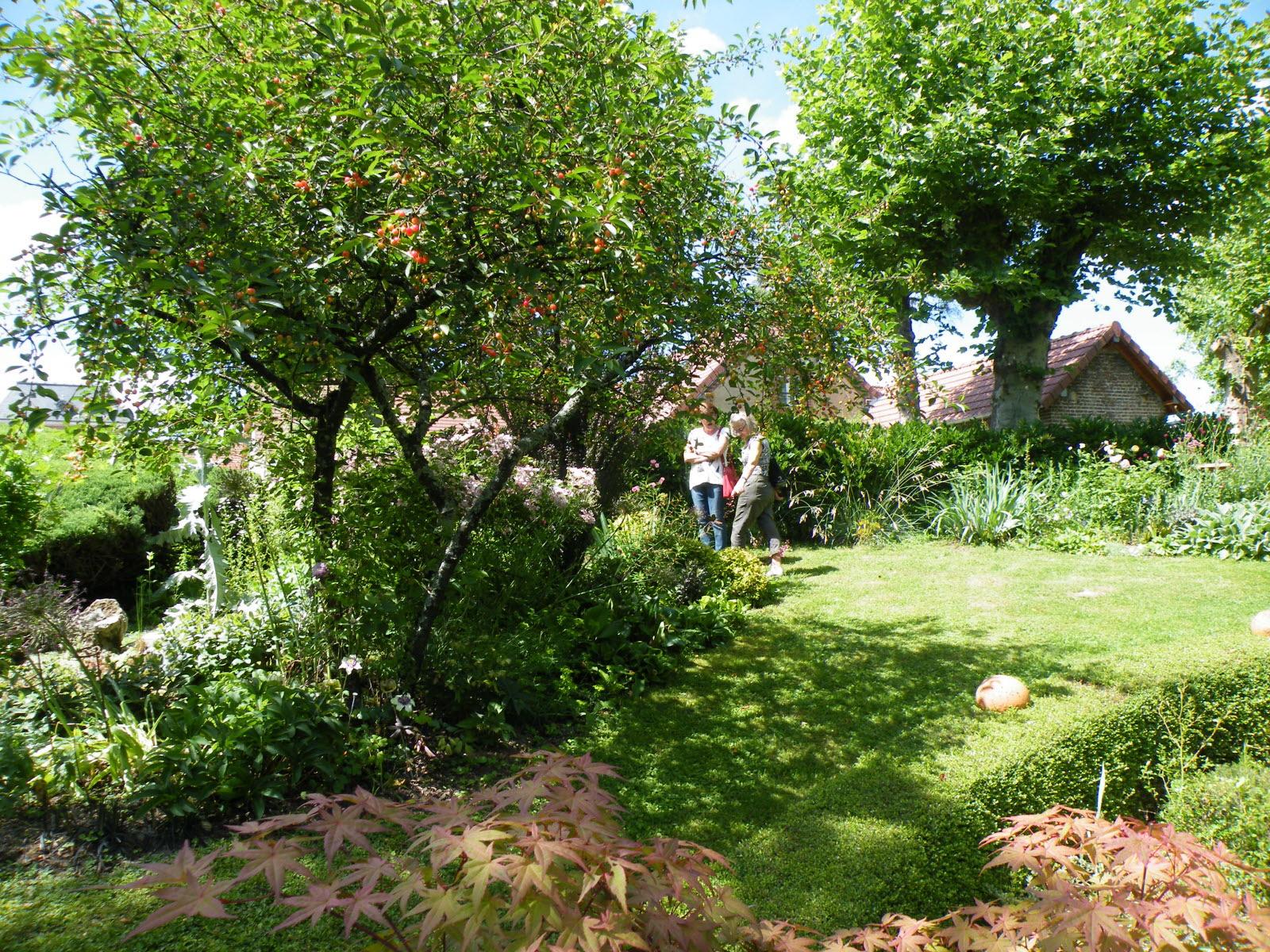 Louhans | Des Idées Pour Sortir En Bresse Ces Prochains Jours avec La Chaux Pour Le Jardin