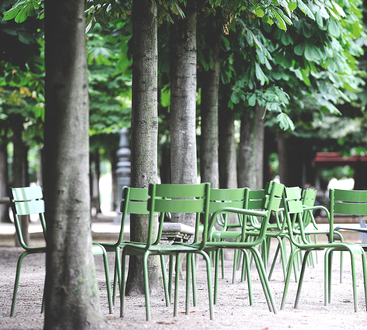 Luxembourg Chair, Metal Chair, Outdoor Furniture avec Fermob Jardin Du Luxembourg