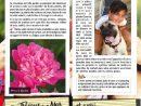 Magazine Du Jardin Mai 2017 | Fliphtml5 pour Bonne Terre Pour Jardin