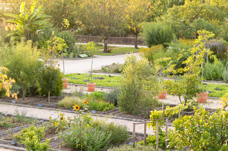 Médiatrice / Médiateur Scientifique Et Éducation ... à Jardin Botanique Emploi