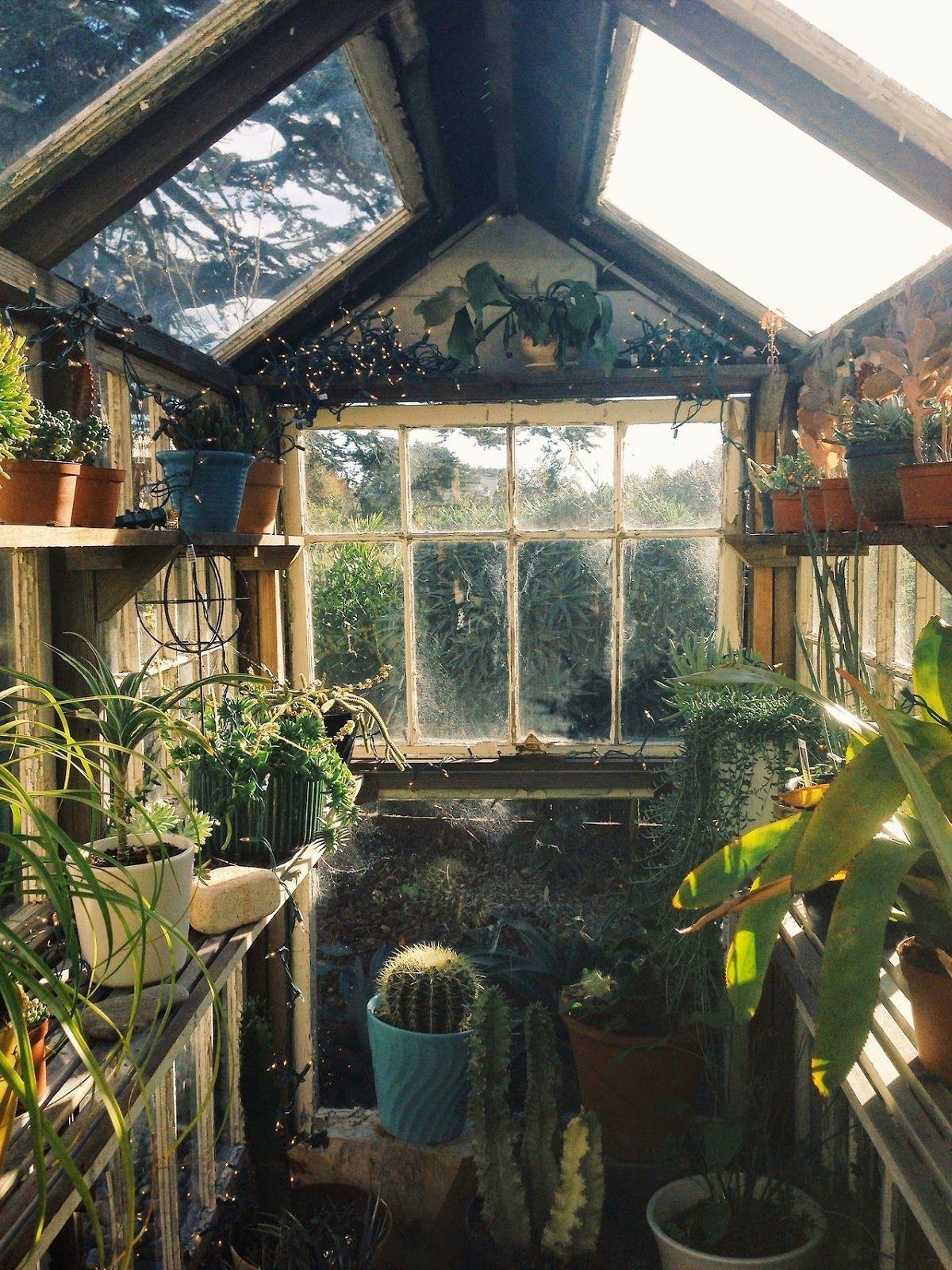 Mes Coups De Coeur Tumblr #2 | Jardin D'hiver, Jardin ... destiné Abri De Jardin Super U